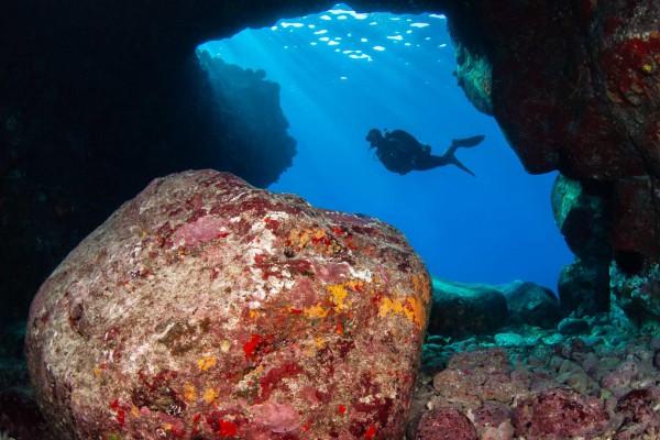 08-foto-taucher-unterwasserfotografie-hawaii-kona-lavagestein-unterwasserlandschaft-taucherBB13B212-07DC-89E6-EDA6-4D1BBF8EC491.jpg
