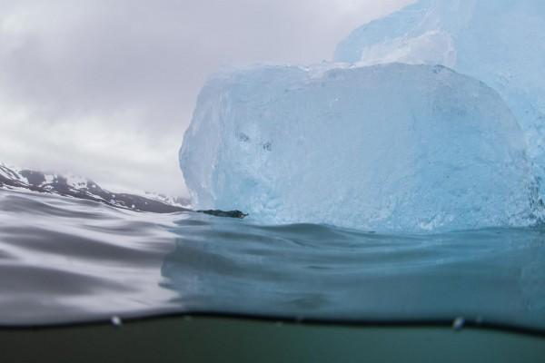 14-foto-taucher-unterwasserfotografie-arktis-svalbard-eisberg1E6968A1-5EE1-1116-B51A-71278BDDDF6B.jpg