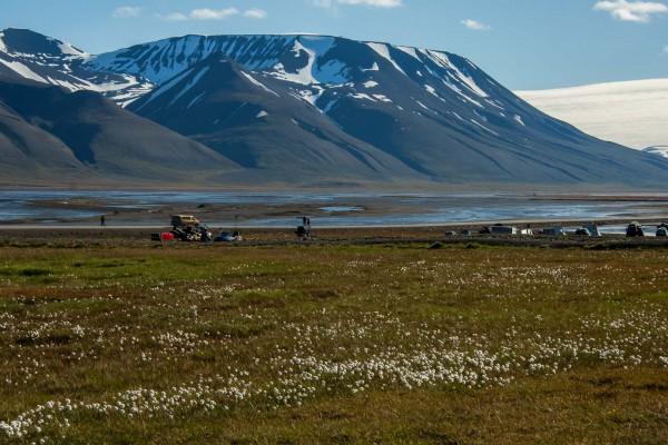 24-foto-taucher-fotografie-arktis-svalbard-longyearbyen79168CBA-8DCB-C3BB-C5B2-17E22C9FFA02.jpg