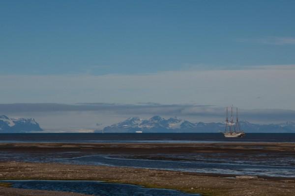 26-foto-taucher-fotografie-arktis-svalbard-longyearbyen7CE7E1E2-068A-FF16-9DC4-C3DE9BC0F87B.jpg