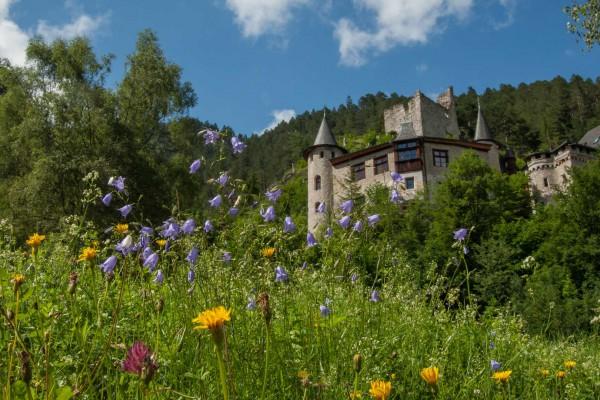foto-taucher-fotografie-hotel-schloss-fernsteinsee367A1CB1-9B44-9D9F-3E46-AFA4F8A666CA.jpg