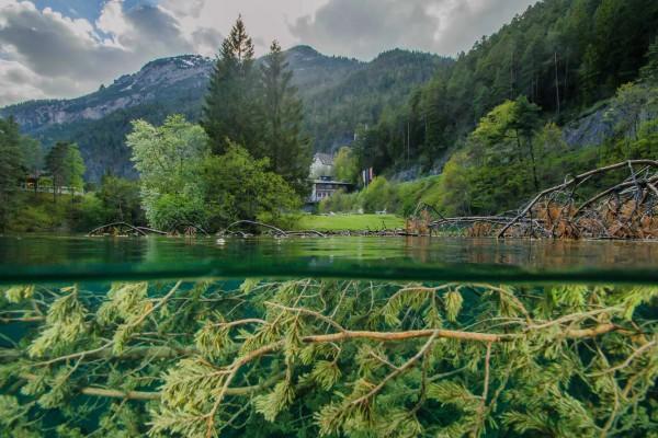 foto-taucher-unterwasserfotografie-fernsteinsee-hotel-schloss-fernsteinsee29A40849-FF91-153D-9710-C89E7FBFBC15.jpg