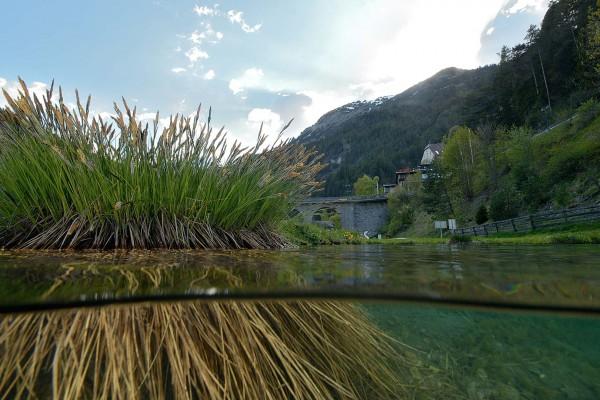 foto-taucher-unterwasserfotografie-hotel-schloss-fernsteinsee19B8338B-0BC6-4265-A28B-FF8E3840EAB4.jpg