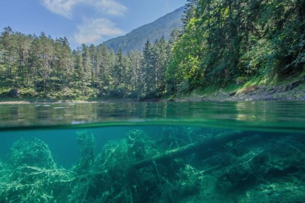 foto-taucher-unterwasserfotografie-trockentauchanzug-kallweit-samarangersee-hotel-schloss-fernsteinsee33E1DD69-CB5E-EFC1-B9C0-2C269C294964.jpg