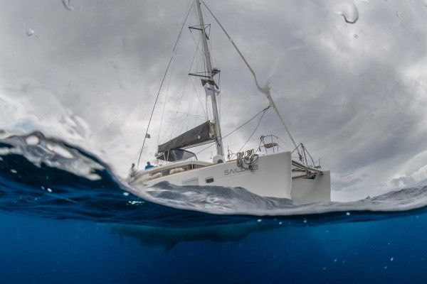 foto-taucher-unterwasserfotografie-azoren-faial-s-y-saildive-liveboard-katamaranD5B9F708-3C62-C00E-3500-74B478E6432B.jpg