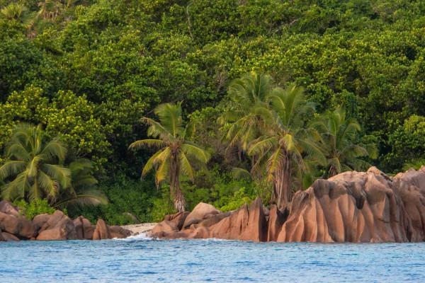 foto-taucher-fotografie-seychellen-praslinBB96FABF-1EB9-04E8-AF28-BA08ADBDD88F.jpg