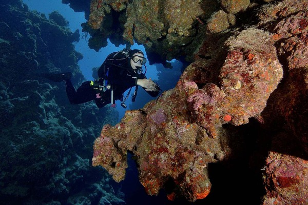foto-taucher-unterwasserfotografie-aegypten-dahab-canyon40E8947F-67AC-1488-37BF-3D7FEE37F568.jpg